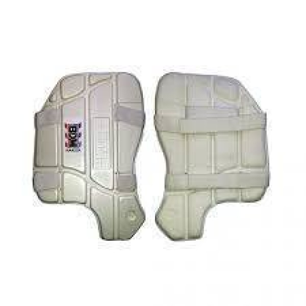 BDM Amazer Thigh Guards